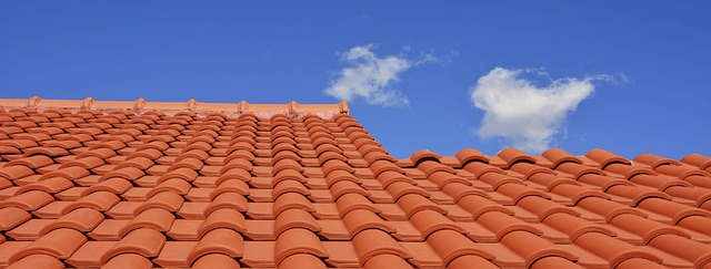 Lovely roof tiles